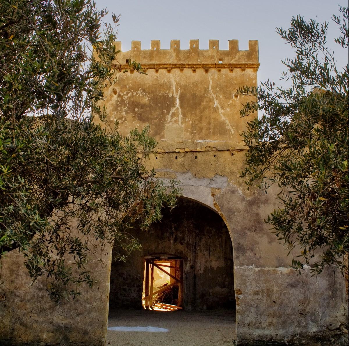 La Torre: da presidio del borgo circostante a simbolo delle Cantine. La verità su questo prezioso reperto.